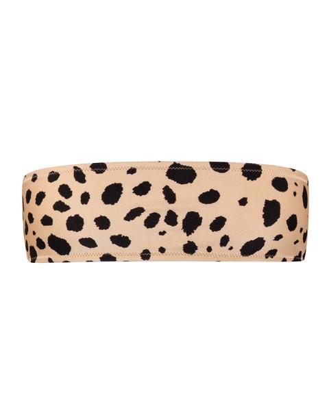 Kaya - Cheetah