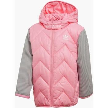 Tienda Dos grados cirujano  Adidas Abrigo De Plumas L Trf Ms Giubbotto Rosa Para Niña de Spartoo en 21  Buttons
