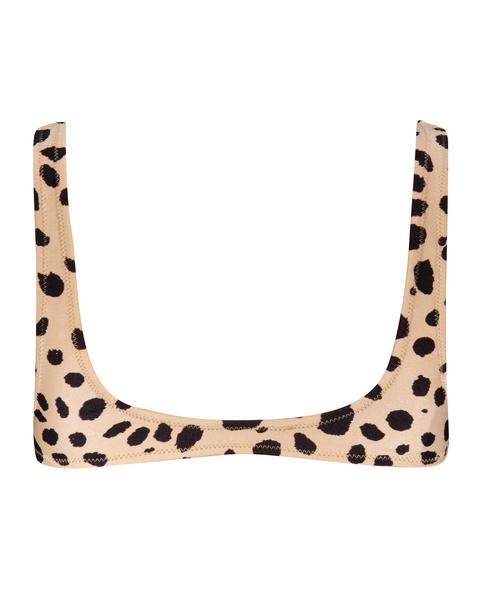Jera - Cheetah
